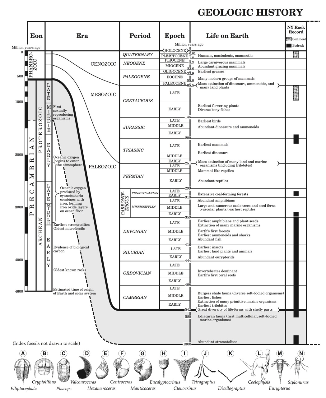 science reference sheet Page 1 science page 1 s t n e m e l e f o e l b a t ci d oi r e p  aims science reference sheet.